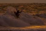 free_surfing08_rommel_gonzales